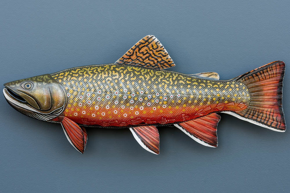 Brook Trout with Fly Patterns
