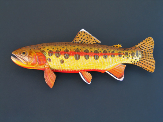 A variety of Trout Sculptures hand tooled by Lance Marshall Boen. This unique fish art is inspired by Lance's passion for fly fishing. His works of art vary from larger than life leather fish sculptures to an Eagle made from vintage baseball gloves with a wingspan of nearly 12 feet.