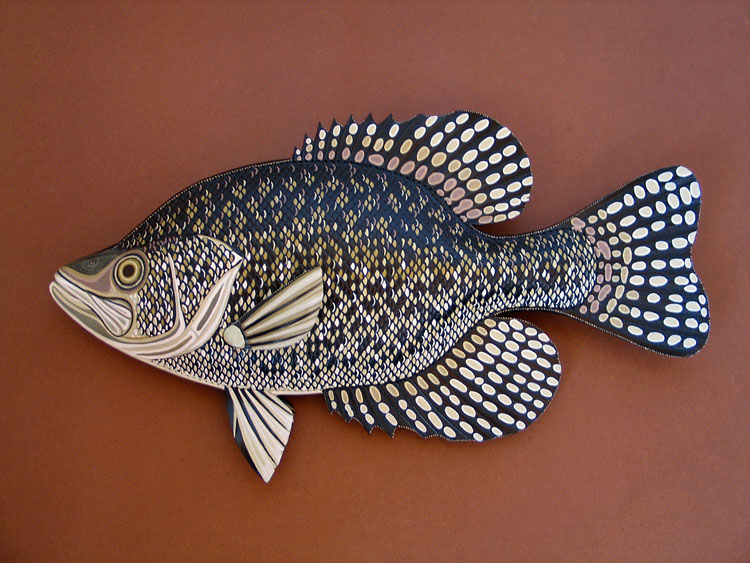 Crappie Sculptures hand tooled by Lance Marshall Boen. This unique fish art is inspired by Lance's passion for fly fishing. His works of art vary from larger than life leather fish sculptures to an Eagle made from vintage baseball gloves with a wingspan of nearly 12 feet.