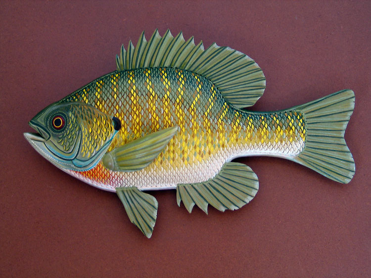 Bluegill | 22"