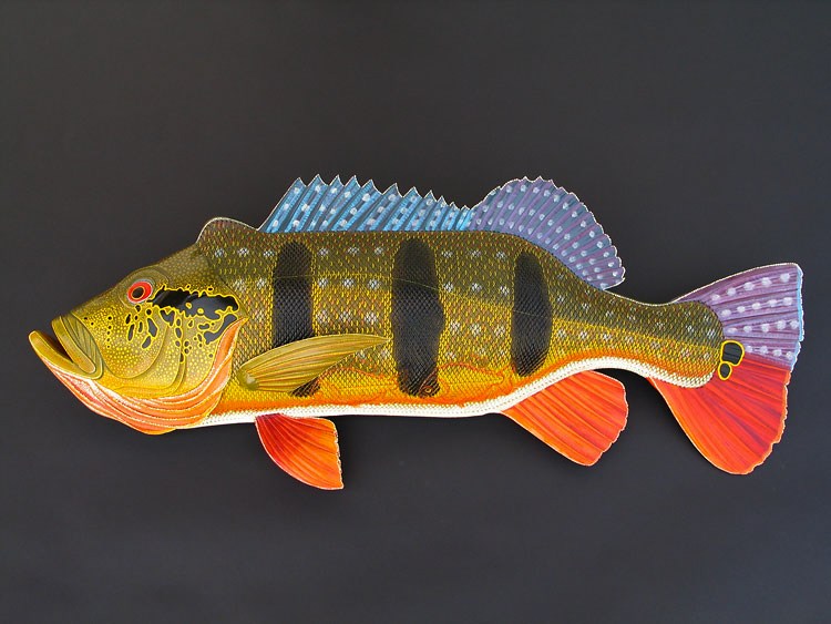 Peacock Bass | 36"