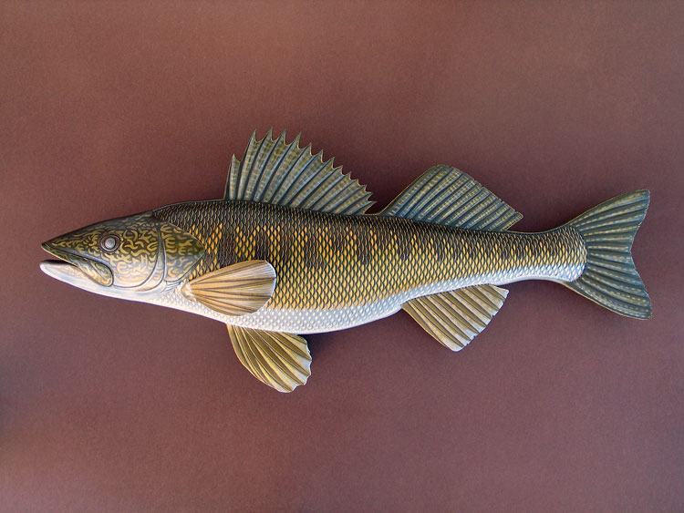 Walleye | 28"